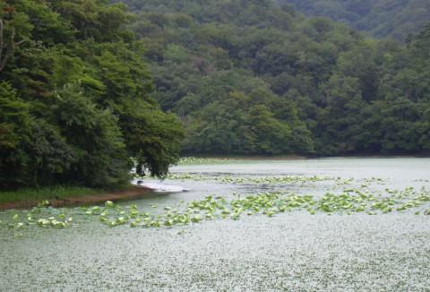 (3)下池・一番の景観.JPG